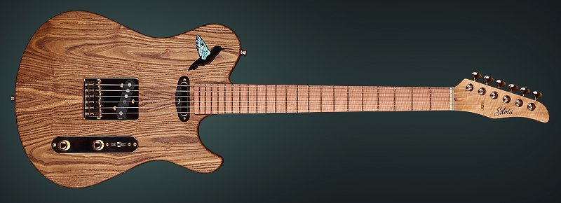 Chambered Guitar